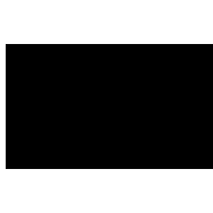 Logo Stichting Literaire Activiteiten Nijmegen