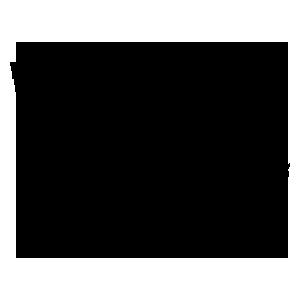 Logo van Vereniging Vlaamse Boekverkopers